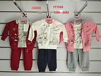 Трикотажный костюм-тройка для девочек Setty Koop оптом, 12-36 мес.