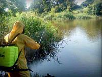 Обработка водоемов при краснухе у рыбы