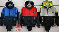 Спортивный костюм для мальчиков оптом, Setty Koop, 6-16 рр