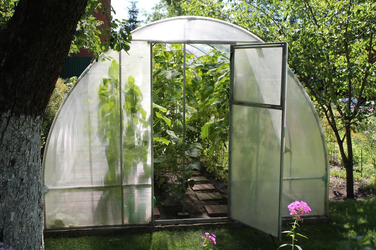 Теплиця Люкс 3х6х2м з полікарбонатом Greenhouse 8 мм