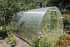 Теплиця Люкс 3х6х2м з полікарбонатом Greenhouse 8 мм, фото 5