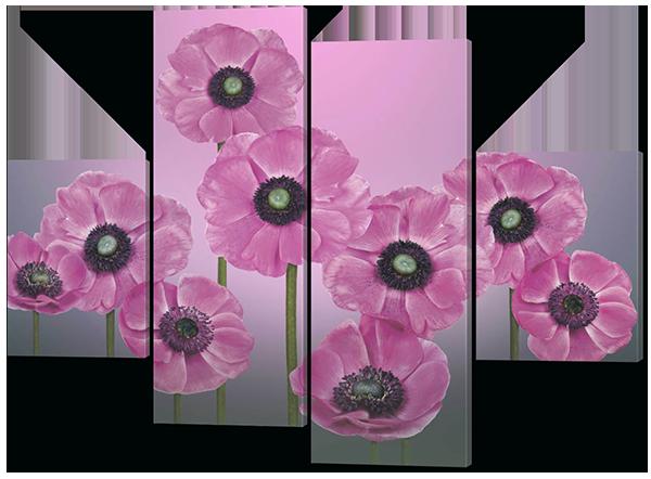 Модульная картина Розовые полевые цветы