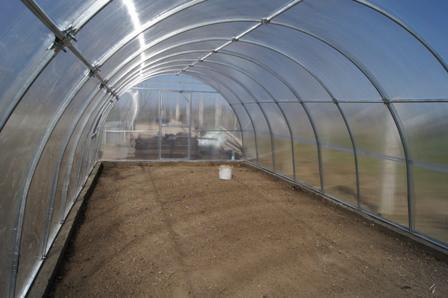 Теплиця Люкс 4х8х2,5м з полікарбонатом Greenhouse 8 мм