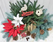 Зимова хвоя, новорічні квіти, ягоди. Натуральний зимовий декор, сухоцвіти.