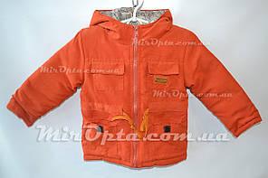 Детская куртка демисезонная Парка (92 - 116 см.) купить оптом со склада