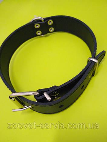 Ошейник для собак кожа - спилок СО-3.5/44-55 ТМЛори, фото 2