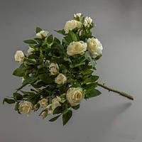 Подарок из живых цветов, мариуполь — 13
