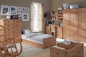 ИНДИАНА(л) Кровать JLOZ90 (Каркас), фото 2