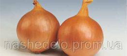 Семена лука репчатого Стамфорд F1 250000 семян Syngenta