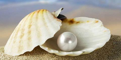 """Алмазная вышивка размер изображения 40х20см - набор """"Морская жемчужина"""""""