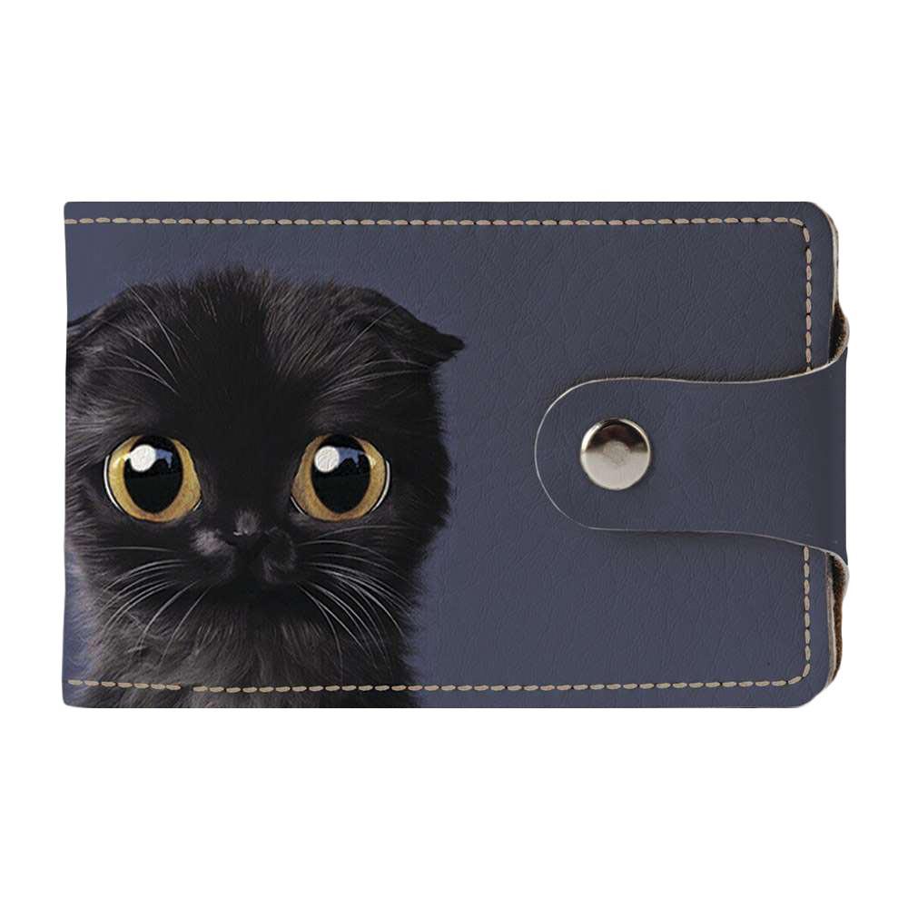 Визитница Fisher Gifts v.2.0. 784 Черный кот (эко-кожа)