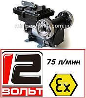 Насос для перекачки бензина, керосина, дизтоплива 75л/мин EX75 12V DC ATEX Piusi (Италия) F00380000