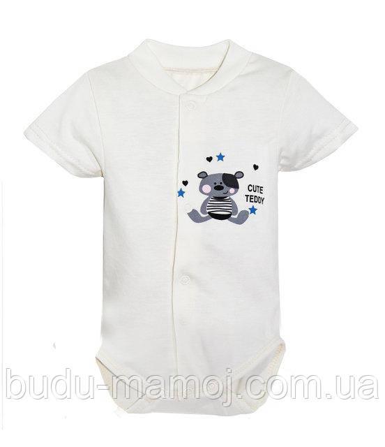 Бодики на кнопочках короткий рукав лето хлопок для новорожденного Польша Тедди 62 размер