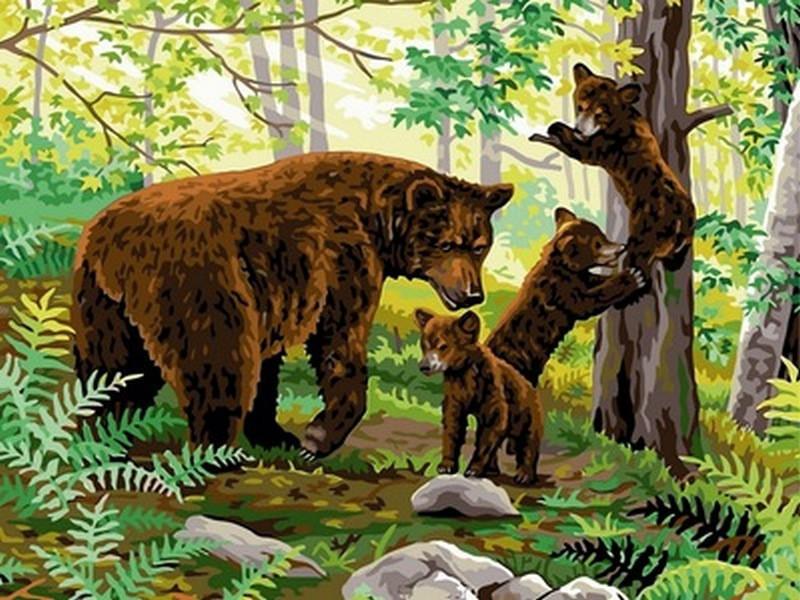 Картина по номерам VK147 Медвежата на прогулке, 30x40 см., Babylon