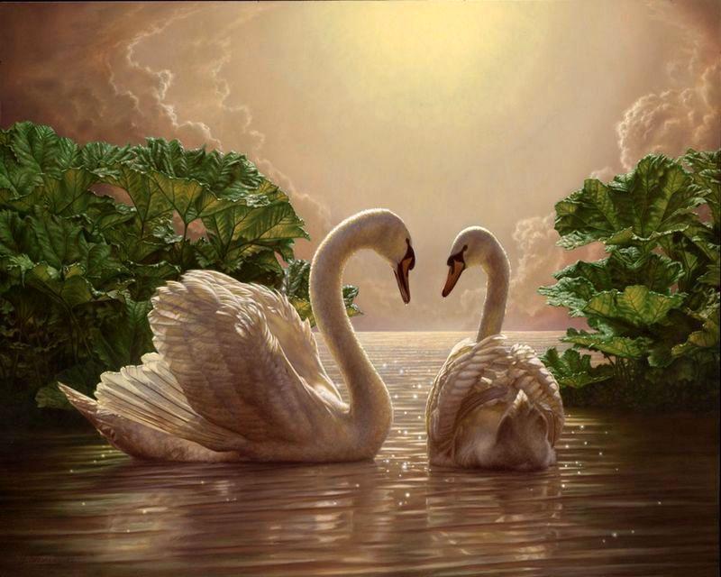 Картина по номерам Любовь (лебеди), 40x50 см., Babylon