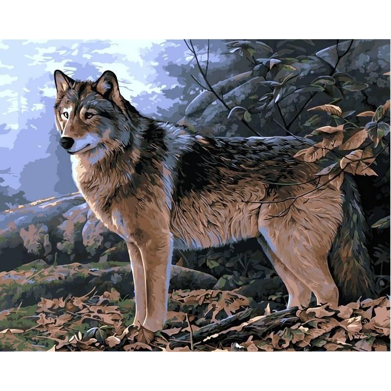 Картина по номерам Волк в осеннем лесу, 40x50 см., Babylon
