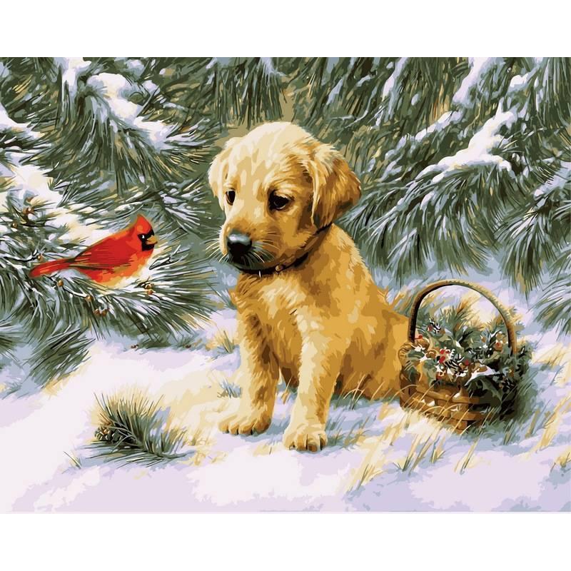 Картина по номерам Щенок и птичка кардинал, 40x50 см., Babylon