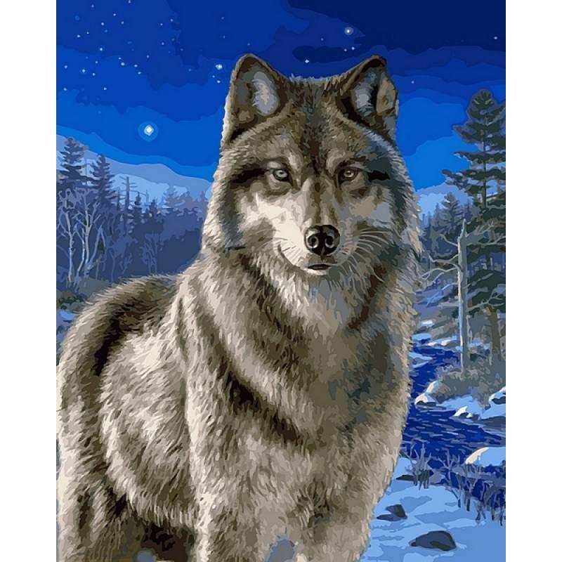 Картина по номерам Волк в зимнем лесу, 40x50 см., Babylon