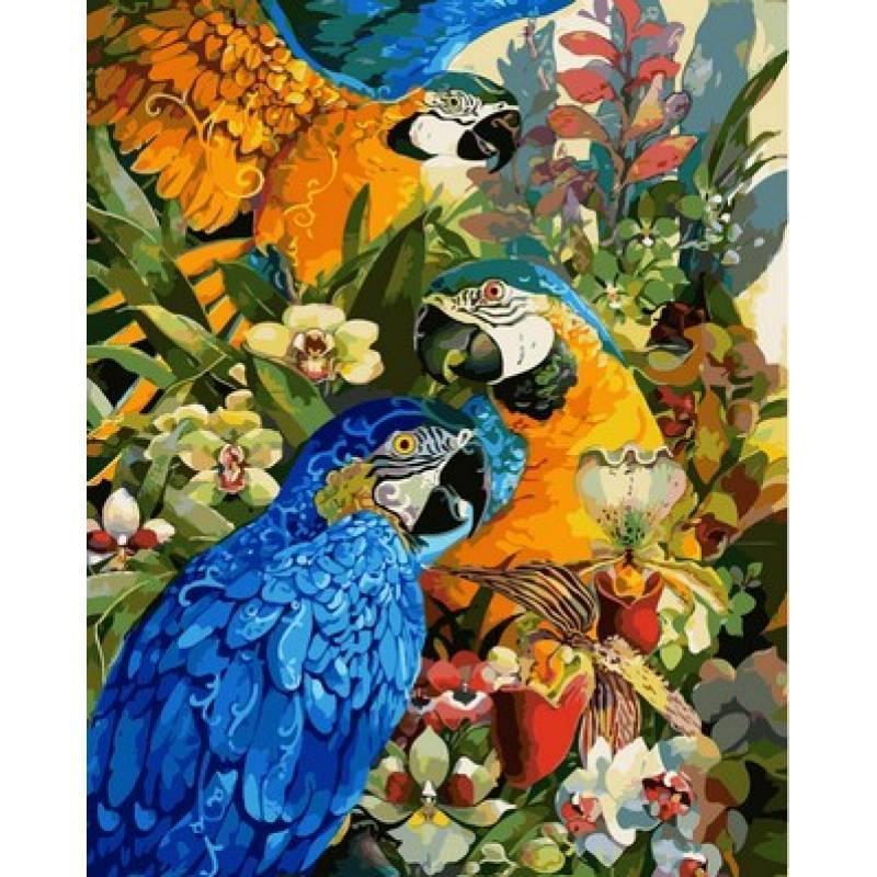 Картина по номерам  Тропические попугаи. Худ. Дэвид Галчутт, 40x50 см., Babylon
