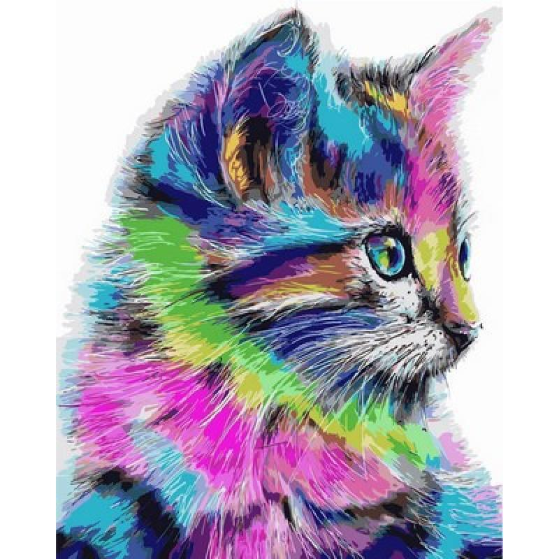 Картина по номерам  Радужный котенок, 40x50 см., Babylon