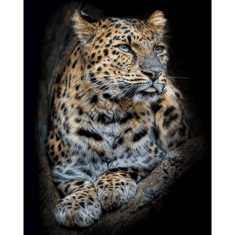 Картина по номерам  Гордый леопард, 40x50 см., Babylon