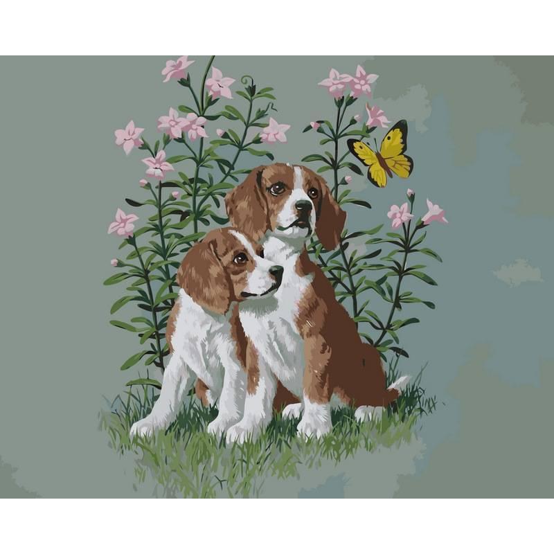 Картина по номерам Два щенка, 40x50 см., Babylon
