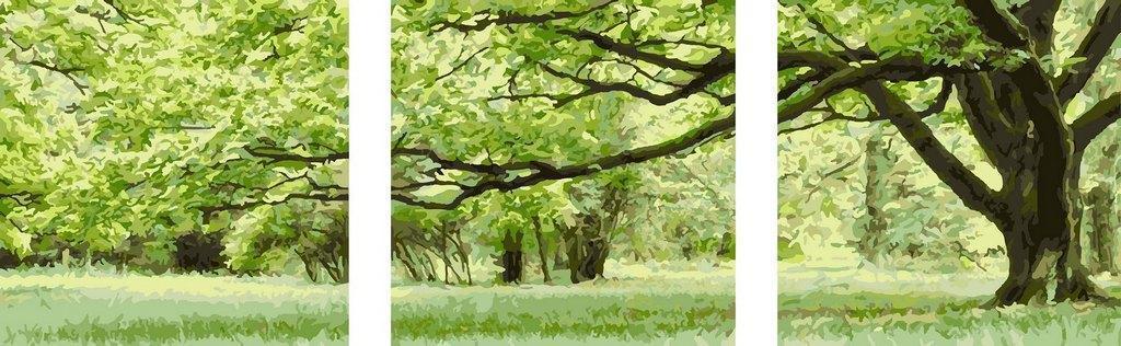 Картина по номерам Зеленое дерево (Триптих), 50x150 см., Babylon