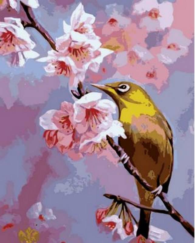 Картина по номерам Колибри на яблоневой ветке, 40x50 см., Mariposa