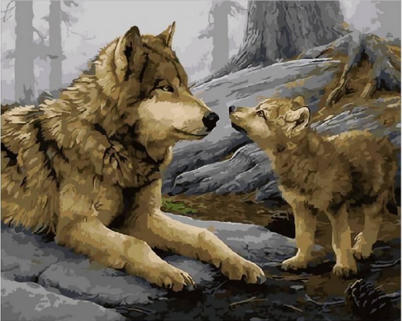 Картина по номерам Волчонок. Худ. Даниель Смит, 40x50 см., Mariposa