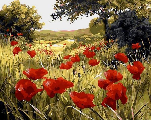 Картина по номерам Маковая поляна. Худ. Мари Дипнал, 40x50 см., Mariposa