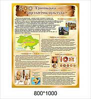 """Стенд для кабинета истории """"Трипольская археологическая культура"""""""