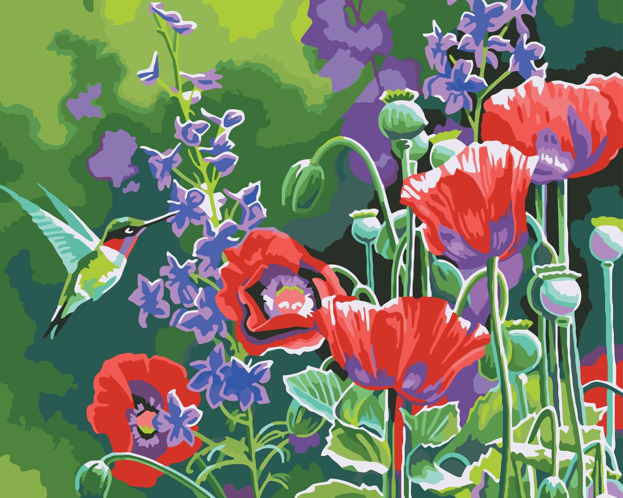Картина по номерам Колибри, 40x50 см., Идейка