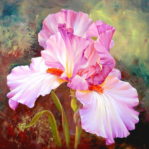 Алмазная вышивка Розовый ирис