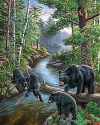 Алмазна вишивка Ведмедики на полюванні
