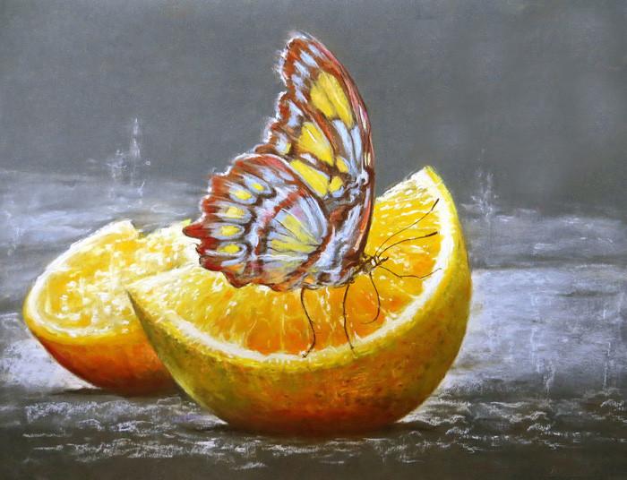 Алмазная вышивка Бабочка на апельсине 180