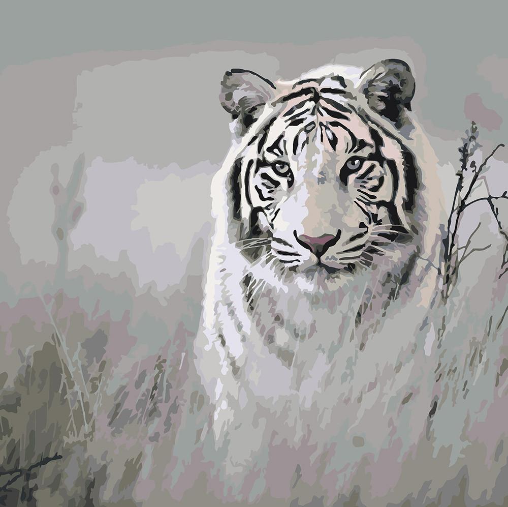 Картина по номерам Хищный взгляд, 40x40 см., Идейка
