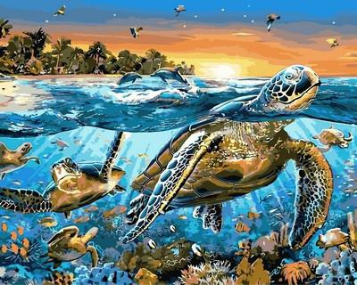 Картина по номерам Морские черепахи. Худ. Адриан Честерман, 40x50 см., Mariposa