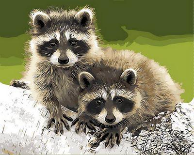 Картина по номерам Забавные еноты, 40x50 см., Mariposa