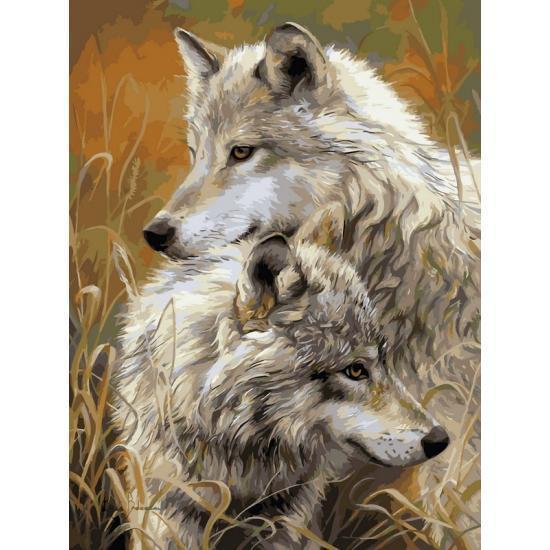 Картина по номерам Степные волки, 40x50 см., Babylon Premium