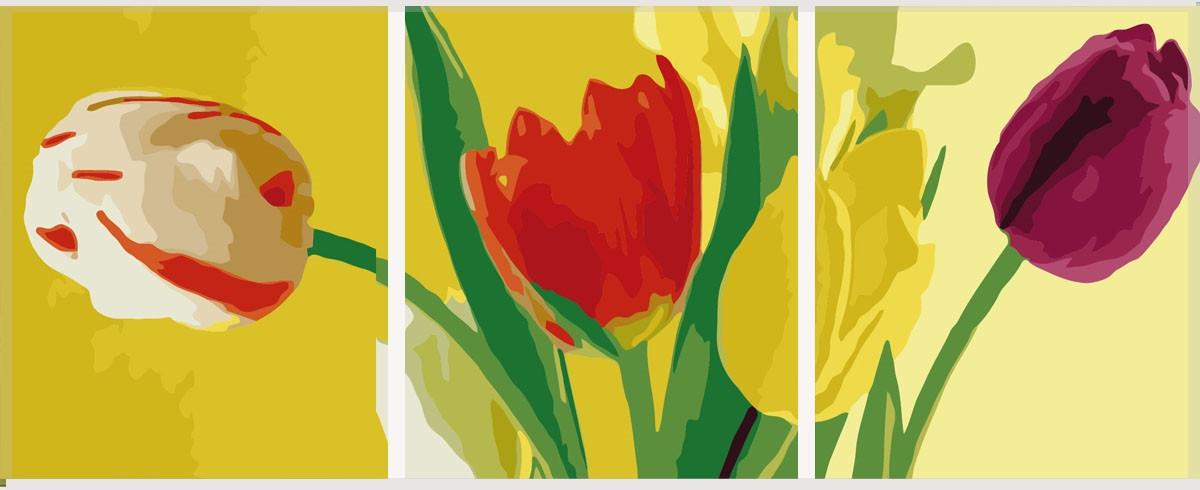 Картина по номерам Разноцветные тюльпаны (Триптих), 50x150 см., Babylon