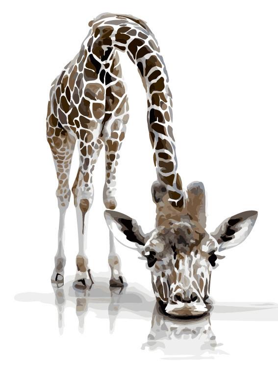 Картина по номерам Забавный жираф,  30x40 см, ArtStory