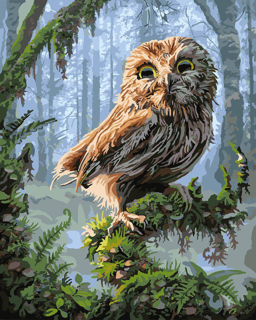Картина по номерам Совёнок в сказочном лесу, 40х50 см., Rainbow Art
