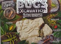Набор для раскопок жуки BUGS Excavation Тм Danko Toys 4