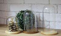 Колпак стеклянный на деревянной подставке