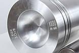 U5LP0009 Поршень с кольцами (101,054 мм) для двигателя Perkins 4.248, фото 3