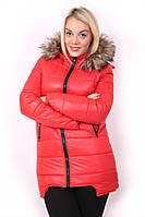 Куртка Микки красный