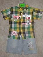 Костюм рубашка+джинсовые шорты. Размер 1,2 года