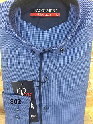Детская рубашка Pacolmen - 802, фото 2