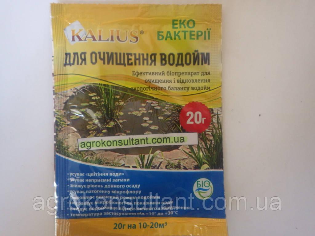 Калиус / Kalius (20 г) - для очистки водоёмов.