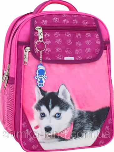 Детский школьный рюкзак для девочки Bagland Отличник с ортопедической спинкой (принт малина хаски) 20 л